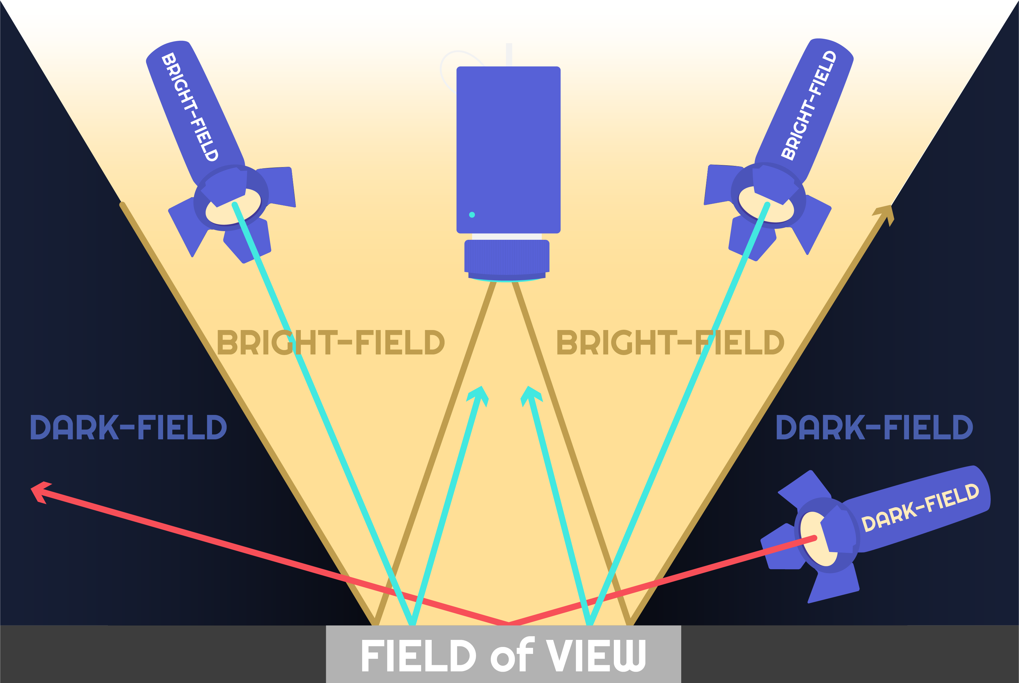 Illuminazione Brightfield e Darkfield